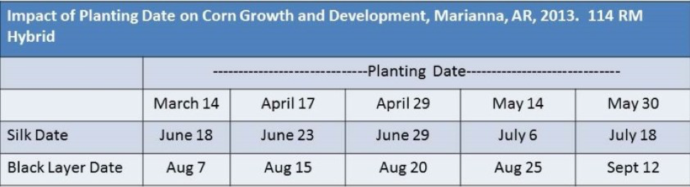 Impact-of-Planting-Date-on-Corn-Growth-and-Development-Trial.png